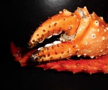 De Grote Geule - Kieldrecht - King Krab